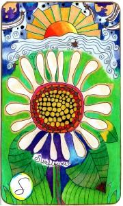 sunflowersidewayswithS 900