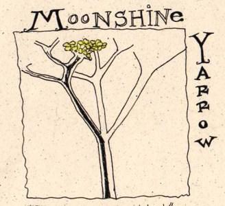 yarrowflower