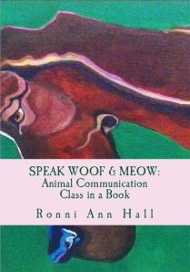 Speakmeowcover